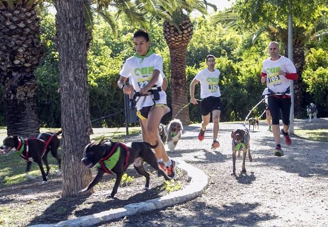 Can we run en Alicante