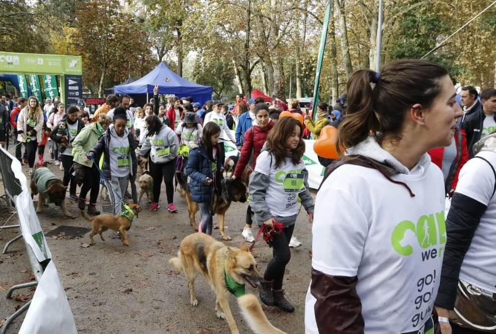 CWR: Perros y dueños disfrutando a la carrera en Castrelos